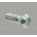 Self tapping core Screw for 10 mm slot profile